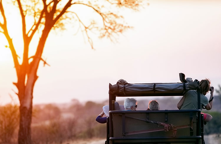 We Take a Look at Eco Tourism Success in South Africa