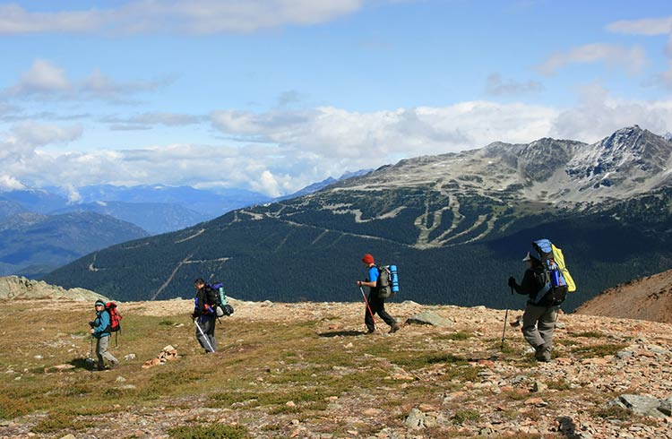 guide to living in whistler