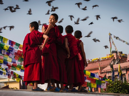Child monks in Nepal
