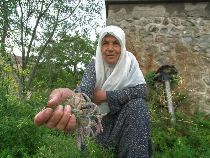Many wild herbs grow around the village. Locals pick and dry them, and often pass them to visiting relatives.