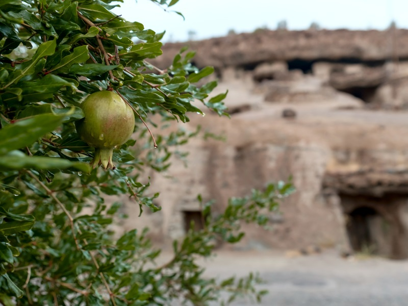 Due to remoteness of Meymand, the villagers try to grow as much produce as they can. You'll see pomegranates, grapes, apples, sunflowers, and various vegetables planted along the roads and in front of caves.