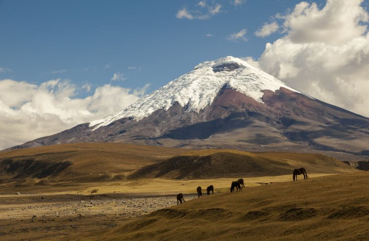 Adventure Sports in Ecuador - A How-To Safety Guide
