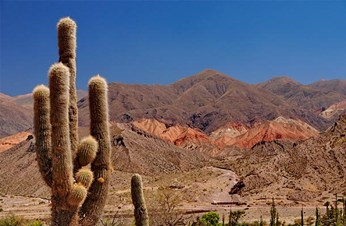 The Long Haul to Salta