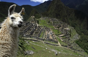 Avoiding disaster on the Inca Trail in Peru