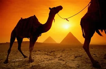 Crossing Borders in Egypt - Travel Safety Tips