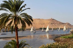 Egypt: Ecotourism and Endangered Wildlife