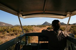 5 Things I Wish I Knew Before Going to Kenya