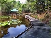 Brunei: Hike Safely in Borneo with World Nomads