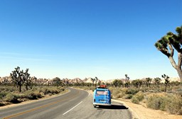 Are You A Road Trip Rookie? Here's How to Do it Right