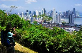 What You Need to Know About Drugs & Crime in Panama