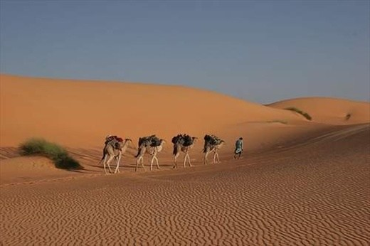 Mauritania travel safety guide